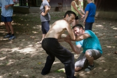 kung fu, tai chi