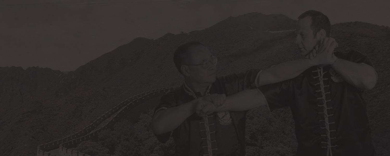 Hét csillag sáska kungfu